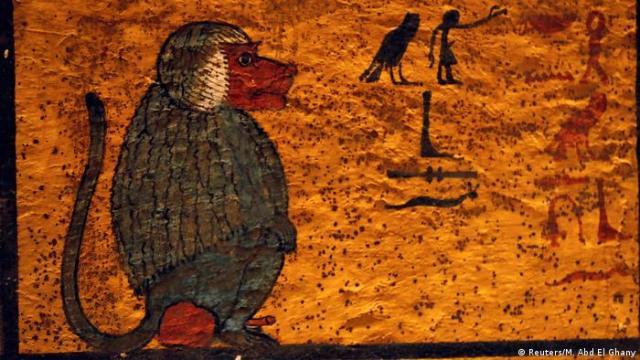 Zeichnung eines Pavians in der Grabkammer (Reuters / M. Abd El Ghany)