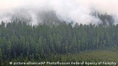 Los incendios en Siberia son consecuencia del calentamiento global.