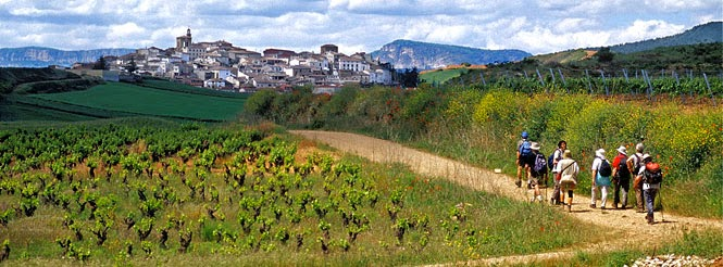 pilgrims_way-brian-mcgilloway-spain031-pano