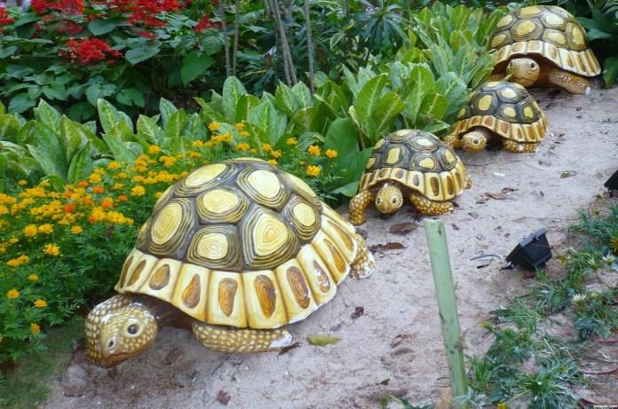 Tortoise-figure