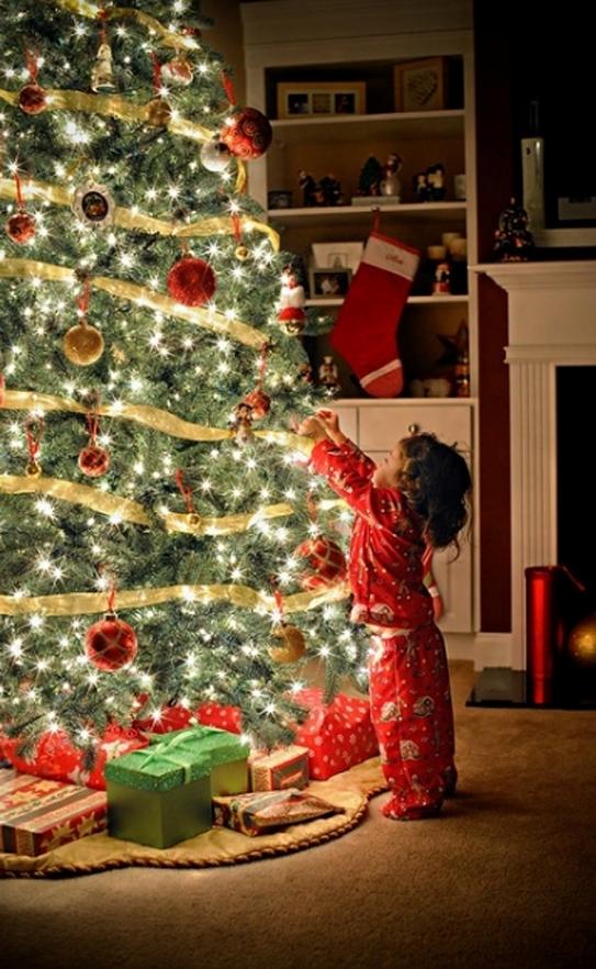 awesome-christmas-tree-decorating-ideas-16