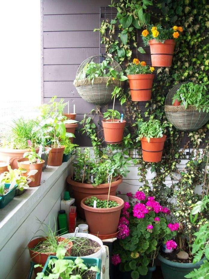 Balcony Garden Containers Dwellingdecor