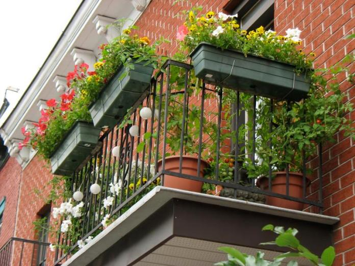 Planter Box Small Apartment Balcony Garden Dwellingdecor