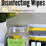 Non-Toxic & Reusable Cleaning Wipes