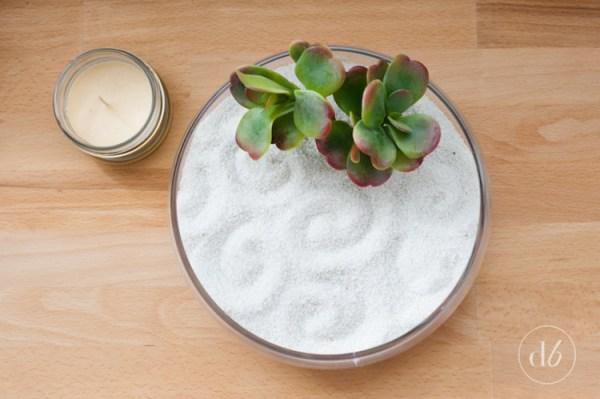 succulent-zen-garden-6