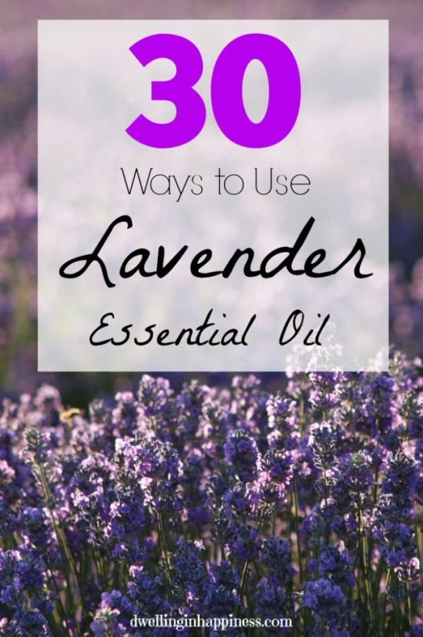 30-ways-to-use-lavender