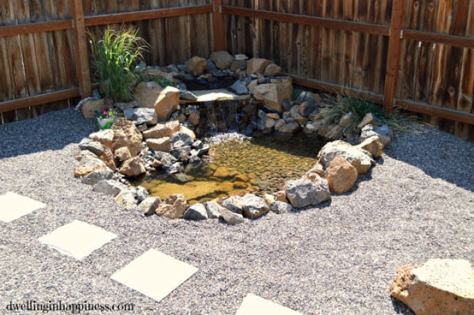 Backyard-pond-