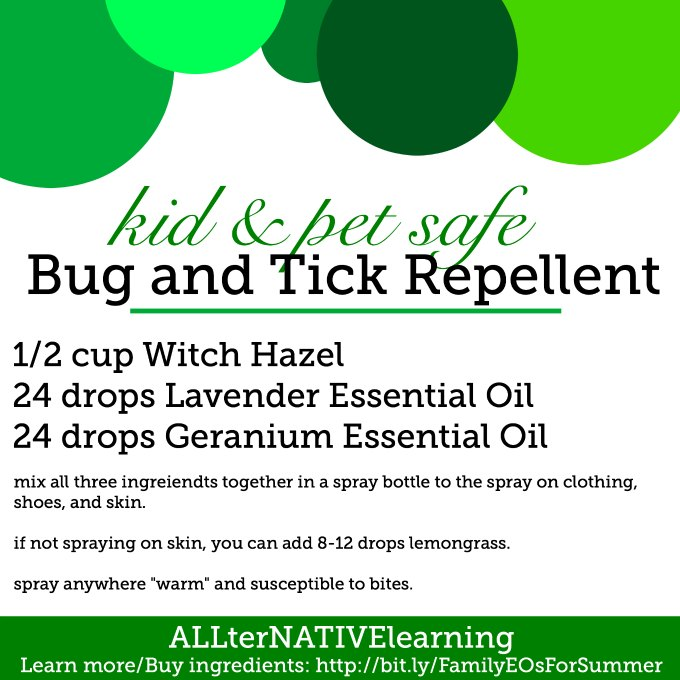 30 Ways To Use Lavender Essential Oil
