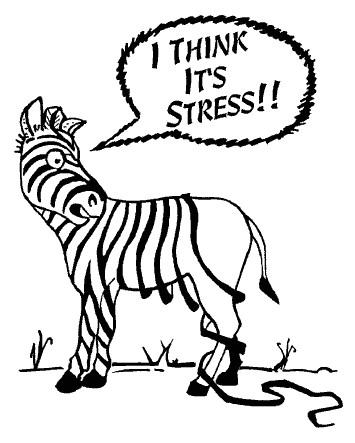 Stress Zebra