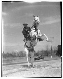 Maryland Mounted Police 1920's