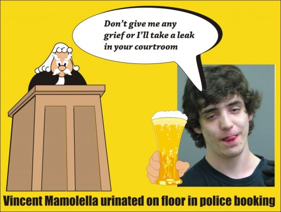 Vincent Mamolella DUI pissed on police booking floor Riverside Il -80415