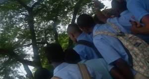 Eleves-LTNOB.jpg