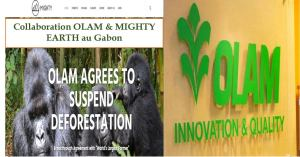 Gabon - collaboration OLAM & MIGHTY EARTH