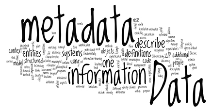 Teaching Wearables and Metadata: An Introduction