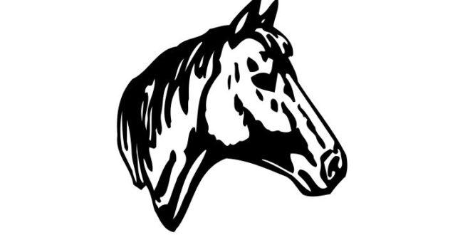 Horse head vector – DXF DOWNLOADS