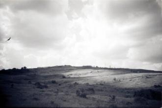 tropeiro (9)