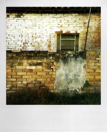 Polaroid 600, O filme - 006 - dxfoto