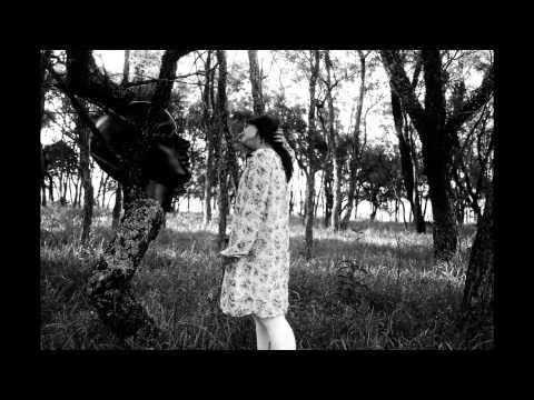 stopmotion-com-filme