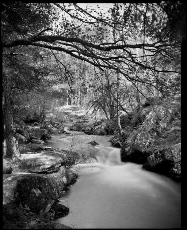 Pancro400, filme preto e branco com emulsão dupla - DXFoto 01