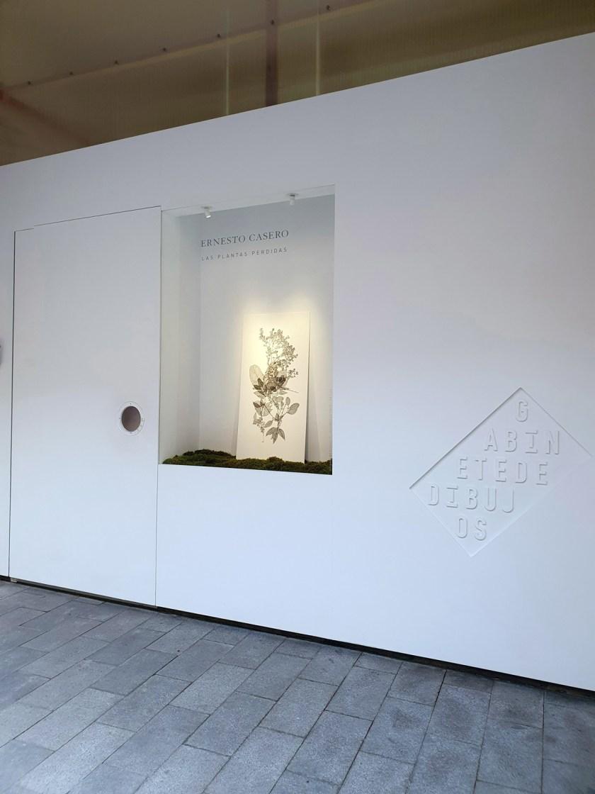 gabinete-de-dibujos-ernesto-casero-las-plantas-perdidas-16