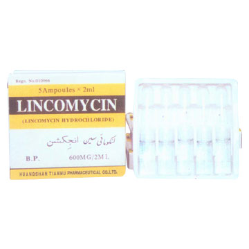 lincomycin Oral Injection - patient information ...