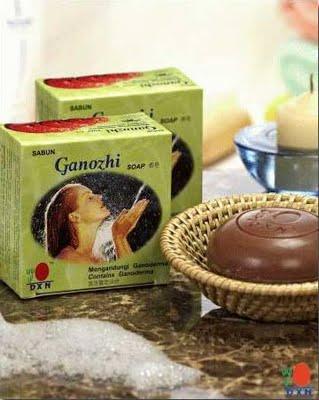 ganozhi_soap