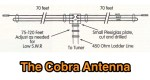 The Cobra Antenna