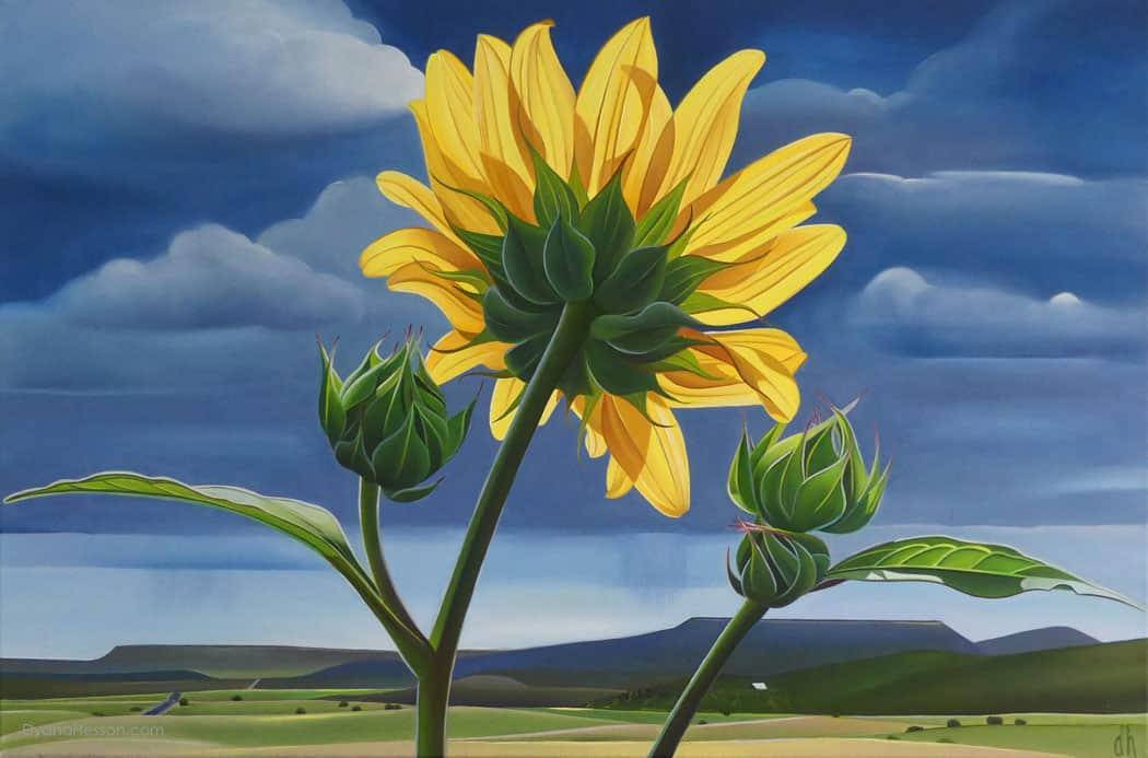 Dyana-Hesson-Out-Standing-in-Her-Field,-Sunflower,-X-Diamond-Ranch,-AZ