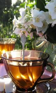 Oracle of tea card back