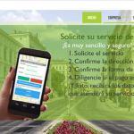 taxiverdes - Proyectos
