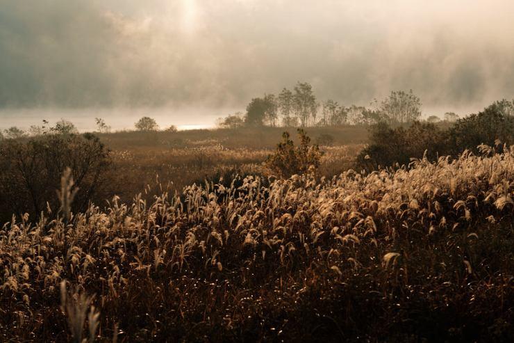 Autumn Fog on Nakdong River