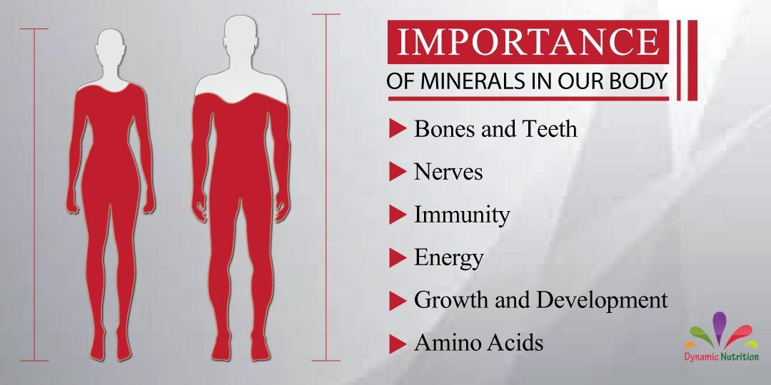Importance of Minerals in Our Body