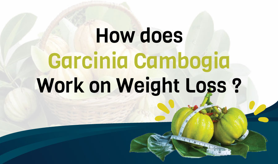 Does garcinia cambogia cause fatigue