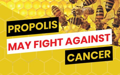 Propolis May Fight Against Cancer
