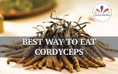 Best Ways to eat Cordyceps