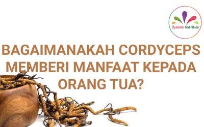 Bagaimanakah Cordyceps memberi Manfaat kepada Orang Tua?