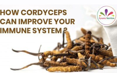 How Cordyceps can Improve Your Immune System?