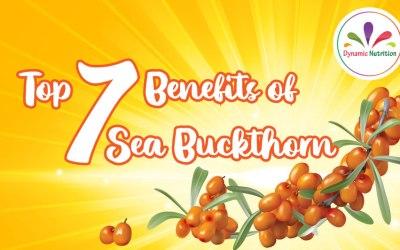 Top 7 Benefits of Sea Buckthorn