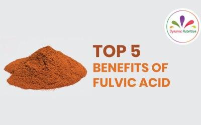 Top 5 Benefits Of Fulvic Acid