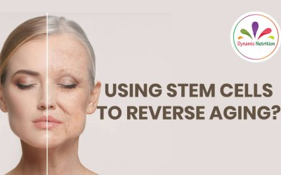 Using Stem Cells To Reverse Aging?