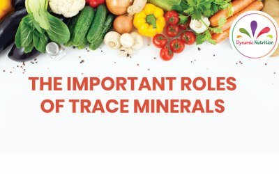 The Important Roles Of Trace Minerals
