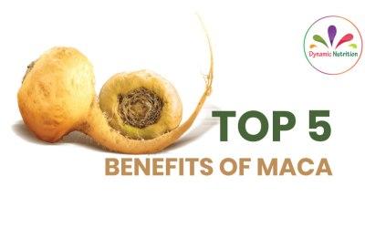 Top 5 Benefits Of Maca