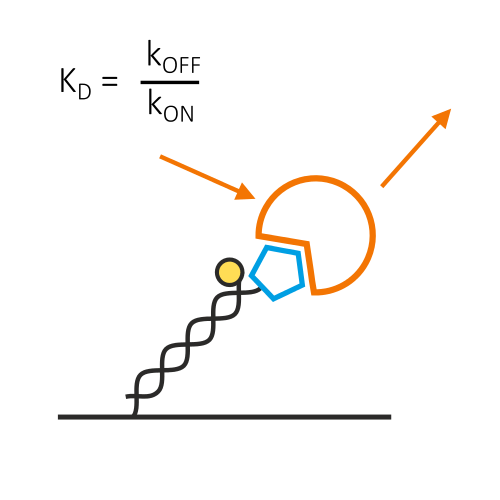 Binding theory: Equations for Affinity and Kinetics