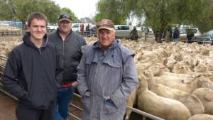 Source: http://www.farmonline.com.au/story/4206288/perfect-storm-erupts-ewe-prices/#!