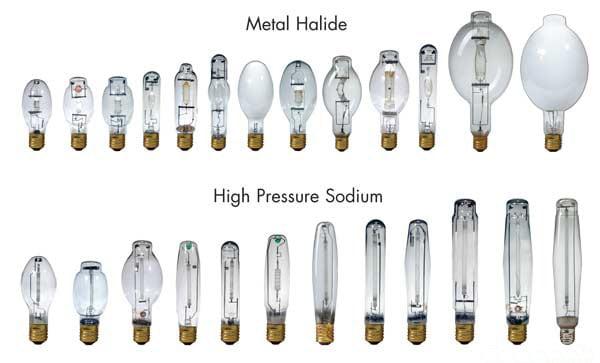 Lowes Full Spectrum Light Bulbs