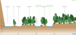 Schéma : coupe d'un des scénarios pour restauration hydromorphologique de l'Ardèche dans sa plaine alluviale en amont de Voguë