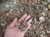 ARDECHE - Plan de gestion physique : vue sur des sédiments d'une affluent de l'Ardèche dans une main pour avoir l'échelle