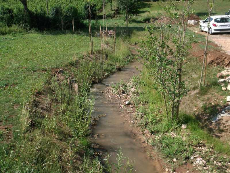 Vue de la Denante post chantier : la rivière est sinueuse et herbacée
