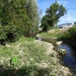 LANGE - Réhabilitation écologique vue sur les banquettes végétalisées