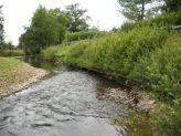 Vue sur la rivière Sornin